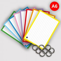 500 Flashcards A6 met 8 ringen en 12 x Stabilo Brush